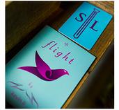 Flight by Kevin Li and Shin Lim