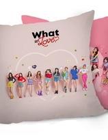 Twice  Pillow