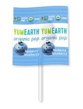 Ekologisk Godisklubba YumEarth Organic Lollipops - Tooberry Blueberry, 7 g