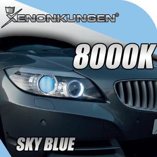D2S Xenonkungen 8000K