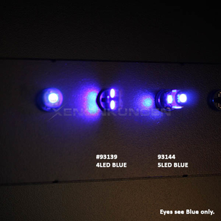 CANBUS T10 5LED - BLUE