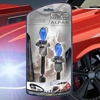 Alfas Ultra White 6000K H4