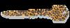 SOG Key Knife Cheetah