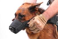 Speed Muzzle (German Shepherd)