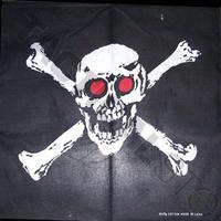 Bandana/Snusnäsduk Skull