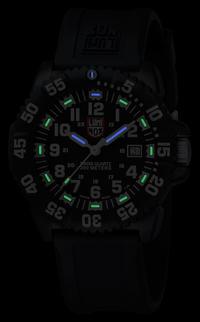 Luminox Navy SEAL Colormark Svart/Vit: 3051