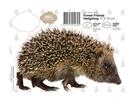 Dekaler för Vägg - Djur