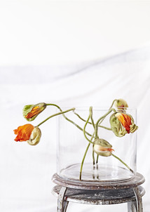 Glas skål/vas 25x30 cm