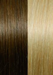 Exclusive Line #12/DB2 Golden Blond With Dark Blond Stripes