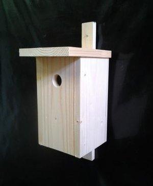 Fågelholk Småfågel