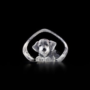 Wildlife Hund (miniatyr)