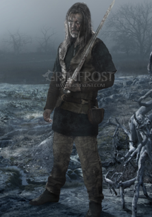 Poster Art: Viking Veteran