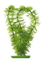 Marina - Ceratophyllum (Hornwort) 30cm