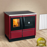 Thermo Rocky 25 kw