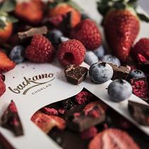 Mjölkchoklad med hallon, blåbär och jordgubbar (ekologisk) - Backamo choklad