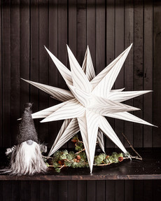Stjärna Silver Stripe