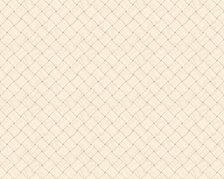 Basket Weave - 5275