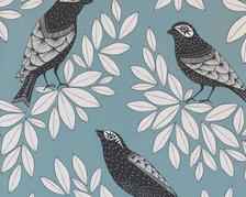 Songbird Blue Jay - MISP1186