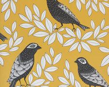Songbird Summer - MISP1188