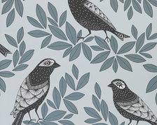 Songbird Dawn - MISP1189