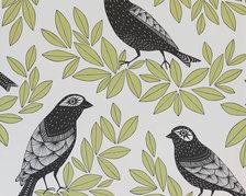 Songbird Eden - MISP1190