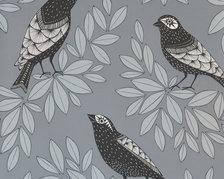 Songbird Slate - MISP1191