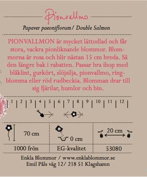 PIONVALLMO - DOUBLE SALMON