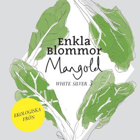 EKOLOGISK MANGOLD - WHITE SILVER 3