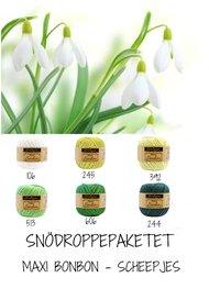 Snödroppepaketet - Maxi BonBon Scheepjes - 12 pack