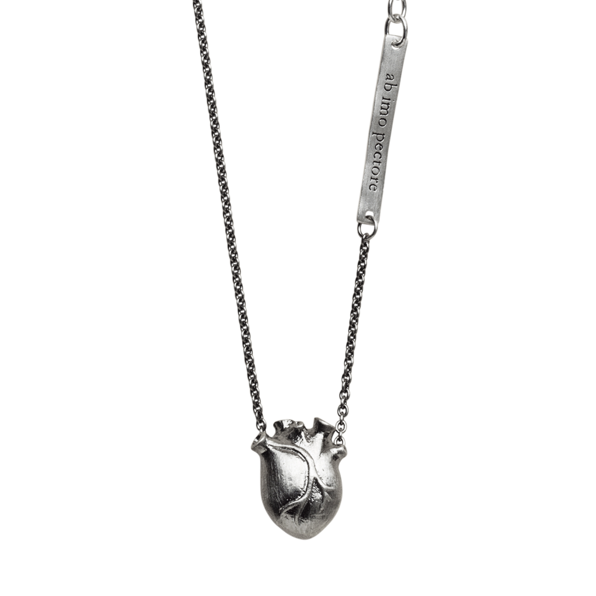 anatomiskt hjärta björg