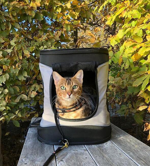 Ryggsäck transportväska för katt  0567bb1f11976