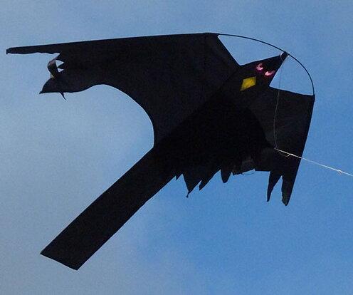 Välkända Drakjohans webbutik - Blacky Hawk rovfågeldrake HM-19