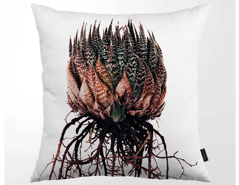 Kuddfodral tropisk kaktusrötter, clinton friedman