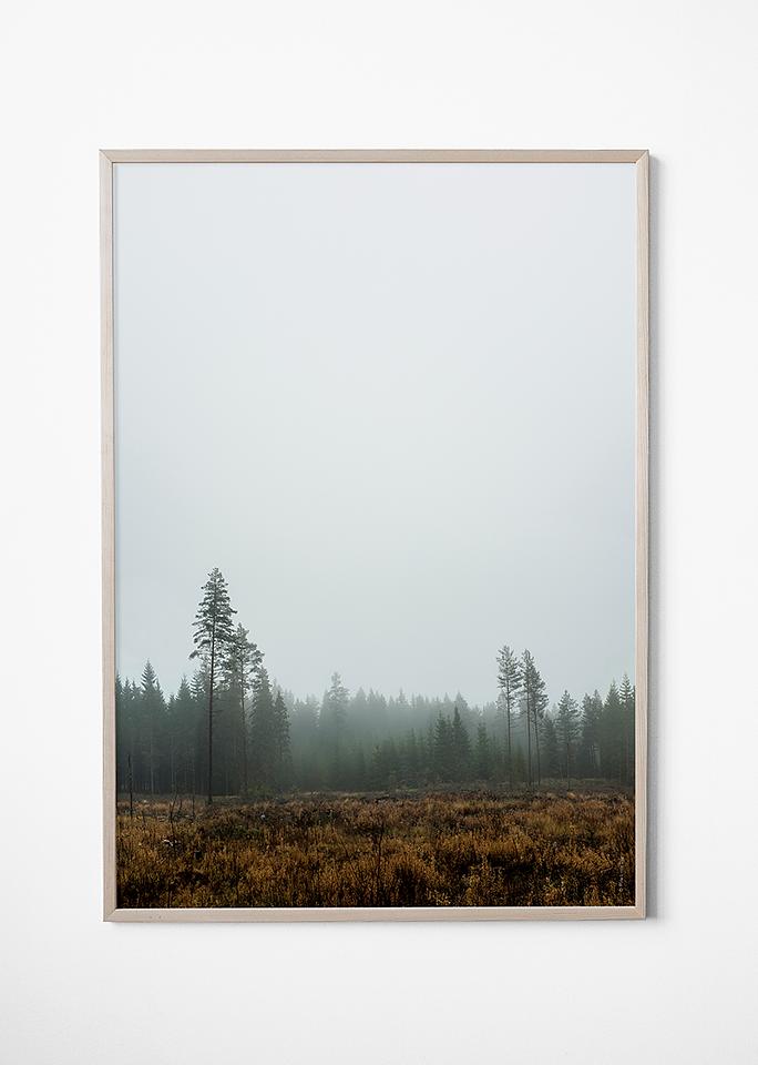 fine little day skog poster