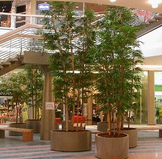 Proyectos de plantas artificiales y rboles artificiales - Decoracion con plantas artificiales ...