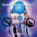 Shamanic Journey -  Llewellyn