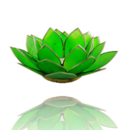 Lotuslyktan i snäckskal - Silvermetall  Grön - Chakra 4