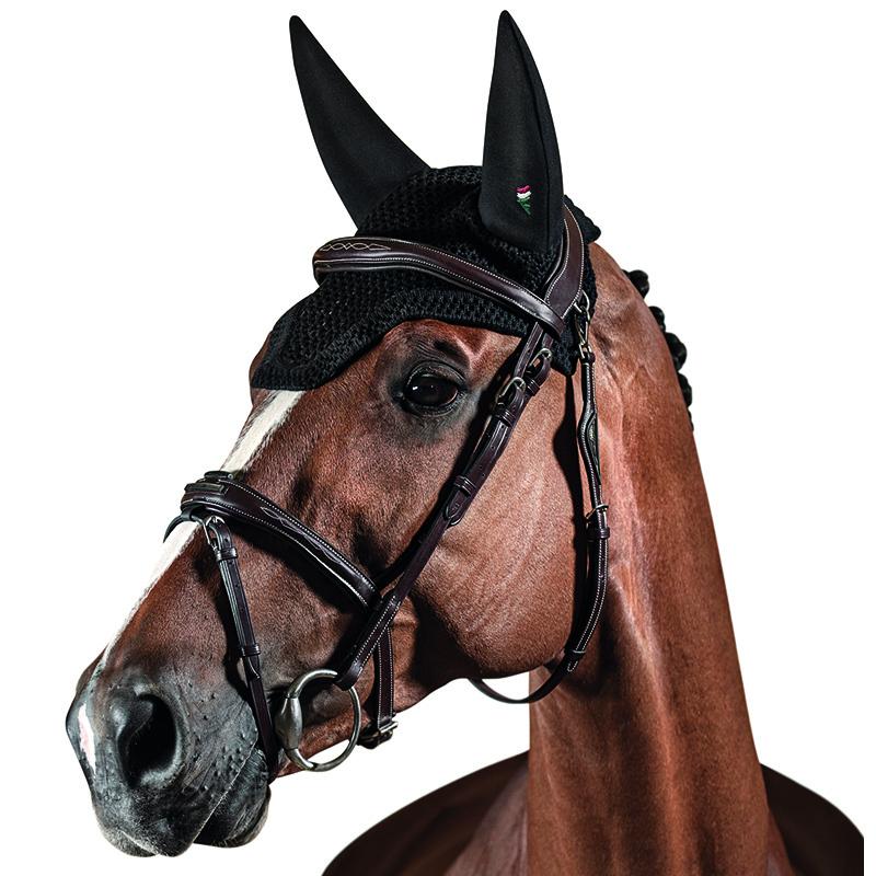 lång huva till häst