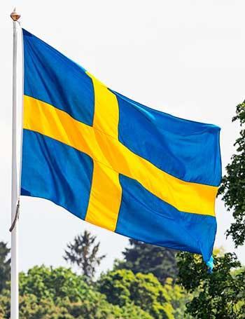 flagga till flaggstång