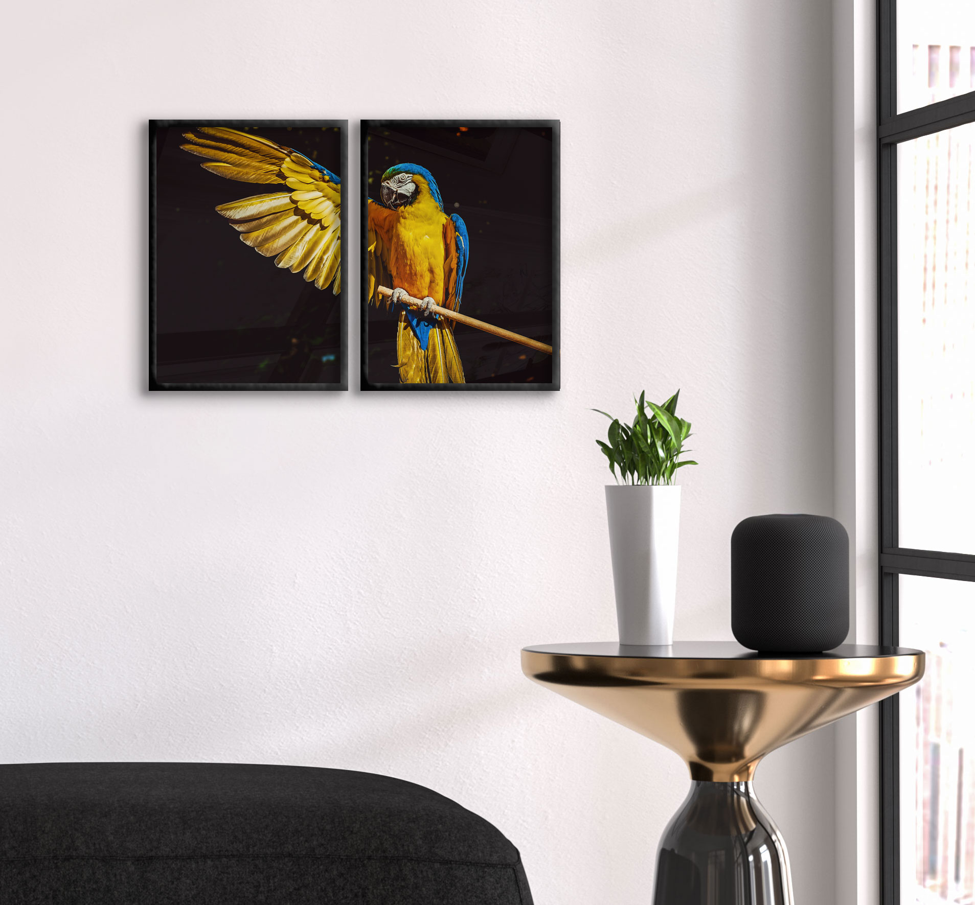cool parrot poster in two pieces swedearts 21259 | 161149443 origpic f21259